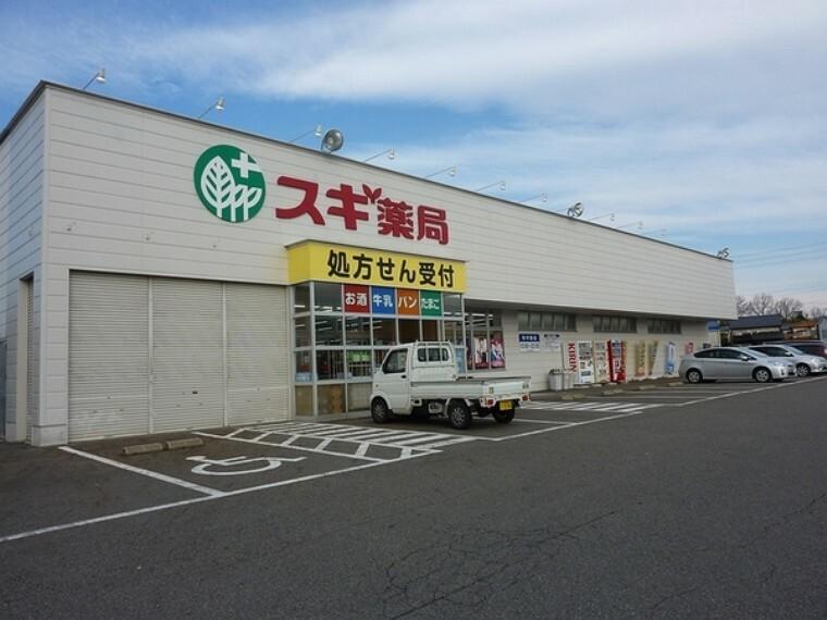 ドラッグストア スギ薬局藤岡店