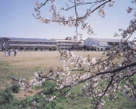 中学校 君津市立君津中学校 徒歩3分。