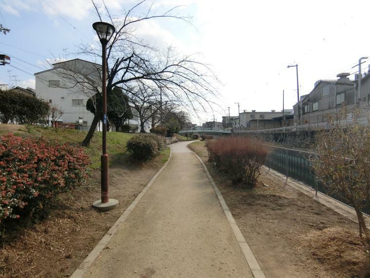 公園 今川緑道