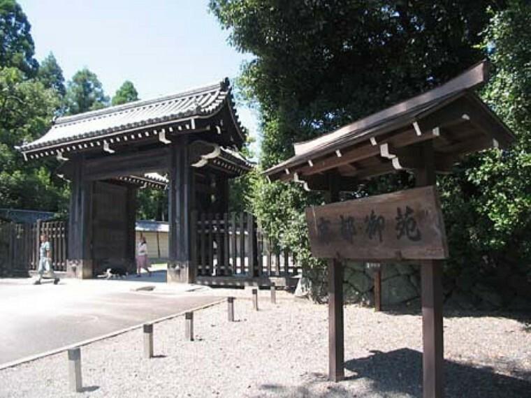 京都御苑 豊かな自然、野鳥や草木の観察、小さなお子様も安心して遊べます。