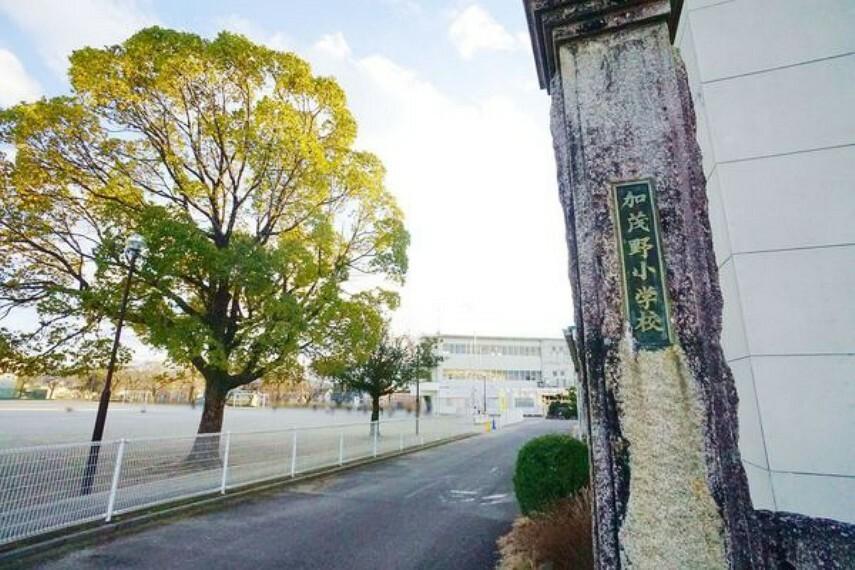 小学校 加茂野小学校 加茂野小学校まで750m(徒歩約10分)