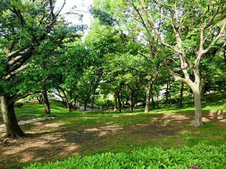 公園 神の木公園280m