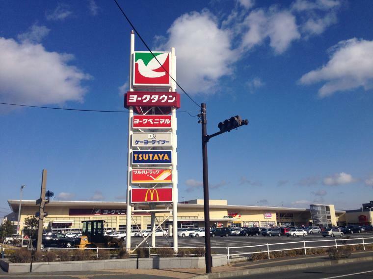ヨークベニマル新田東店