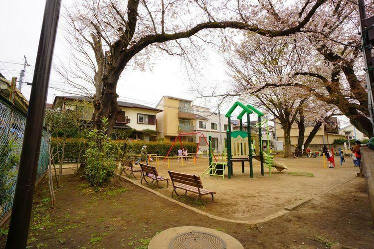 隣接している天沼東公園。お庭がなくても区が管理してくれる公園があれば遊び場所には困りません