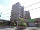 マイキャッスル川口中青木公園