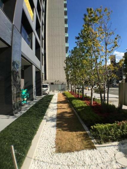 現況写真 マンション周辺には緑も多く癒しの空間が広がります。