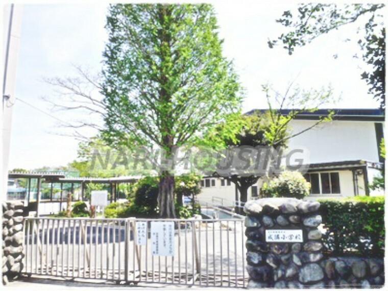 小学校 【小学校】昭島市立 成隣小学校まで178m