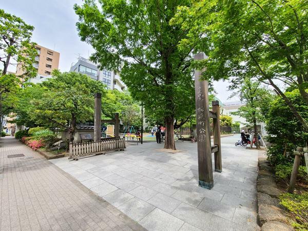 公園 蛎殻町公園。リバーサイドに緑豊かな公園の点在する住環境が整っています。