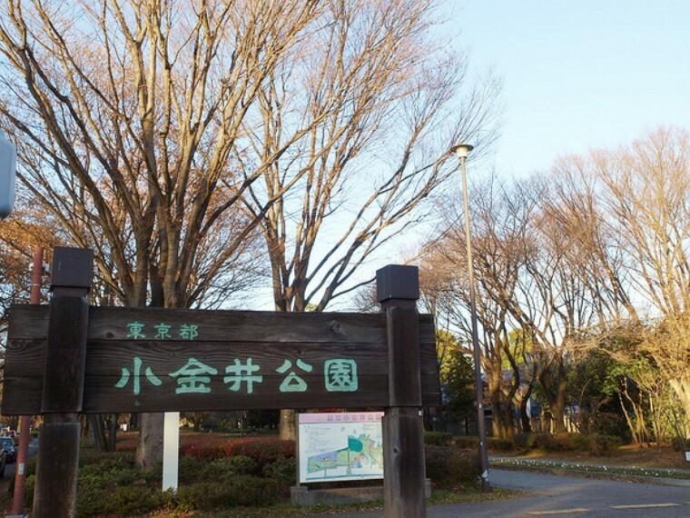 公園 都立小金井公園