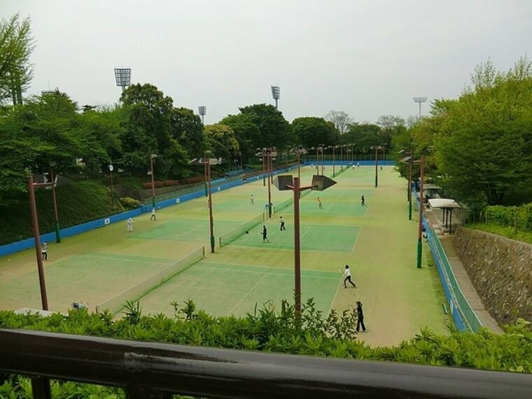 公園 三ツ沢公園 ニッパツ三ツ沢球技場や、陸上競技場、テニスコート、馬術練習場、平沼記念体育館、県立スポーツ会館など多様な運動施設がある。