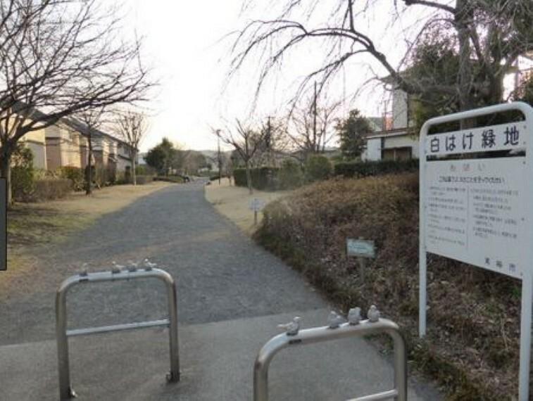 公園 【公園】白はけ公園まで105m