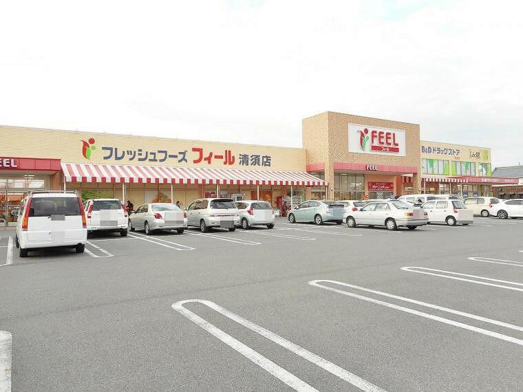 スーパー フィール 清須店