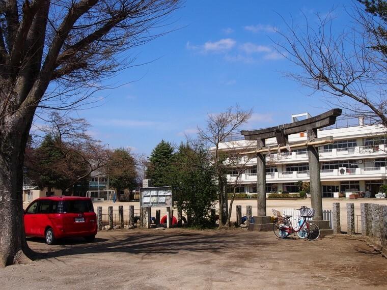小学校 【小学校】野田市立 南部小学校まで1595m