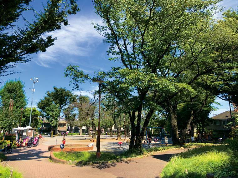 公園 常盤台公園