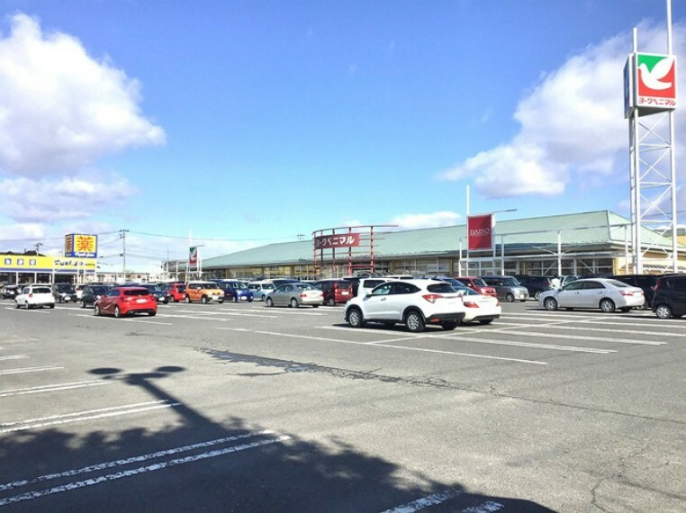 ショッピングセンター 当分譲地北西区画を起点に約800m 徒歩10分(2021年3月撮影) スーパー・ドラッグストアなど毎日の買い物に便利なショッピングタウンです。