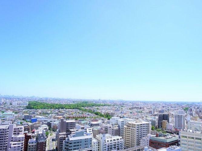 眺望 寝室からも低層の街が望めます。吉祥寺駅前にある「井の頭恩賜公園」もその姿が全部見えてしまうくらい。