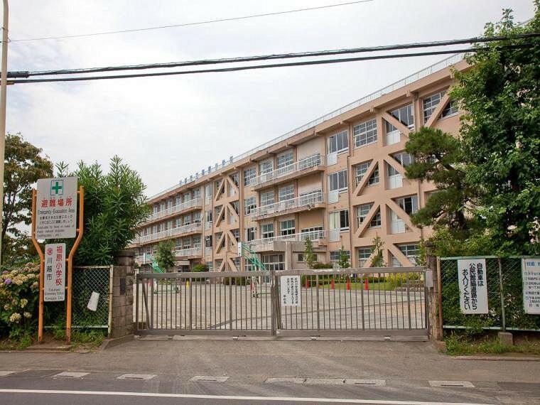 小学校 川越市立福原小学校(2251m)
