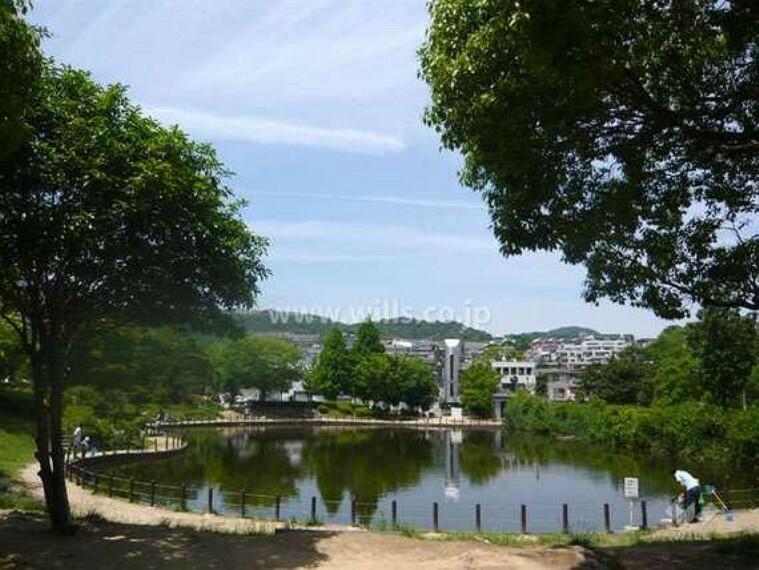 公園 樋之池公園の外観