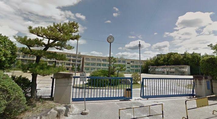 中学校 岡崎市立竜海中学校 徒歩14分。