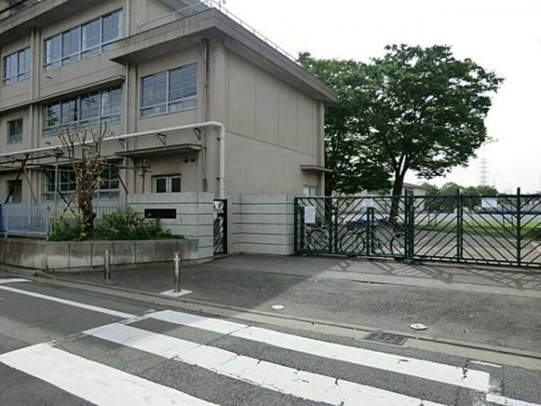 小学校 川崎市立新町小学校 375m