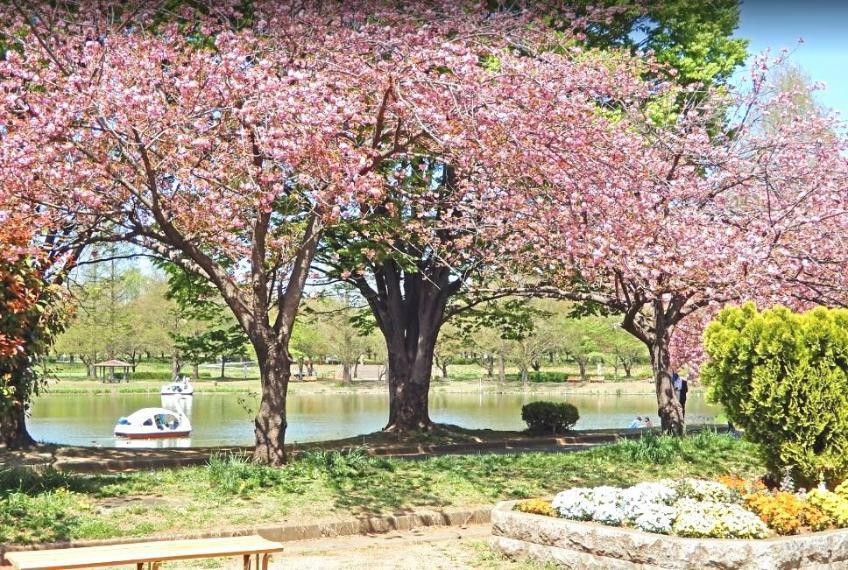 公園 川越水上公園