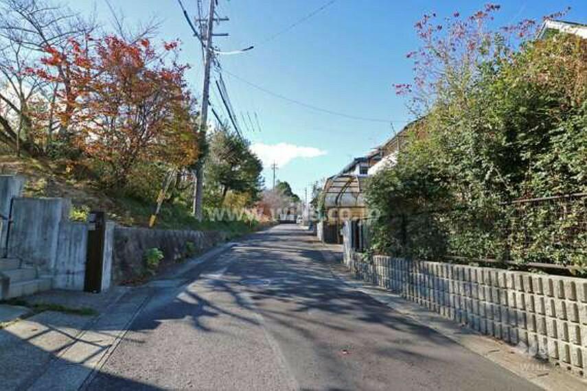 現況写真 北付け道路。生垣や植栽のある家が多く、身近に緑を感じることができます。