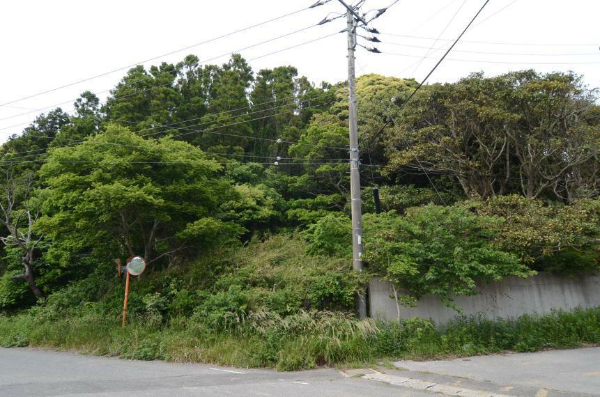 現況写真 南側接道道路からの様子 東南側外観