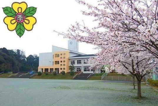 小学校 大網白里市立 季美の森小学校 徒歩24分。