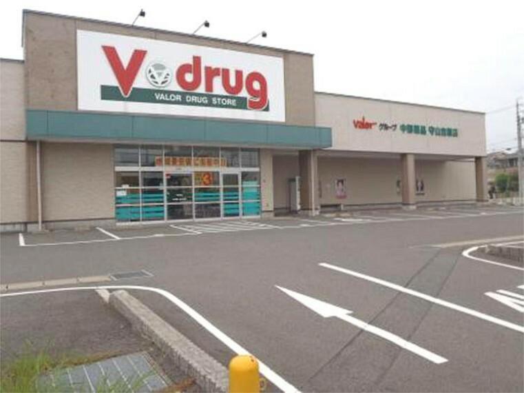 ドラッグストア V・drug 守山吉根店