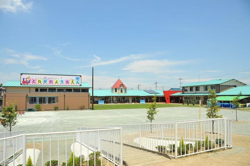 幼稚園・保育園 【幼稚園】利根川学園とねがわ幼稚園まで412m
