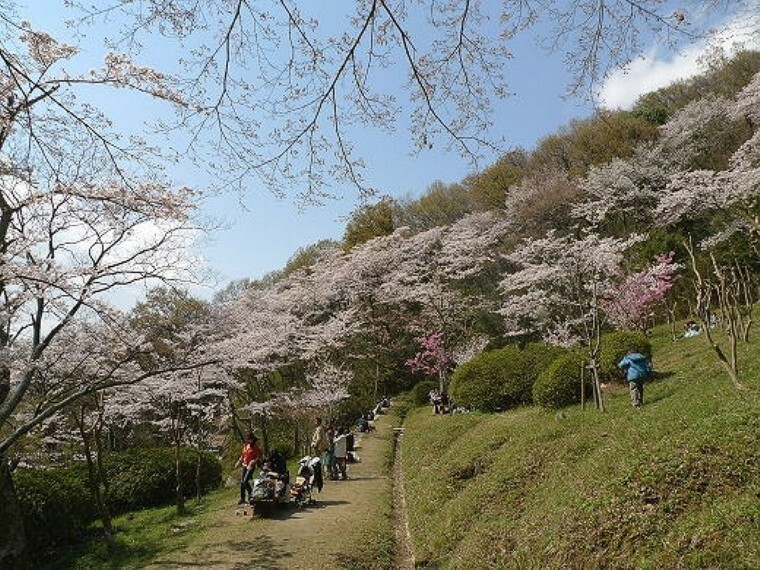 公園 枚岡公園 桜園路