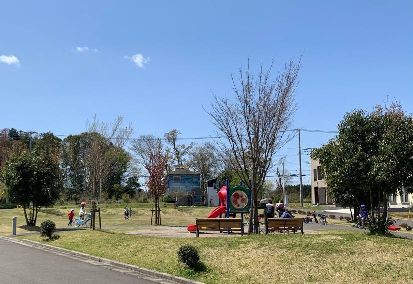 公園 いこいの森公園