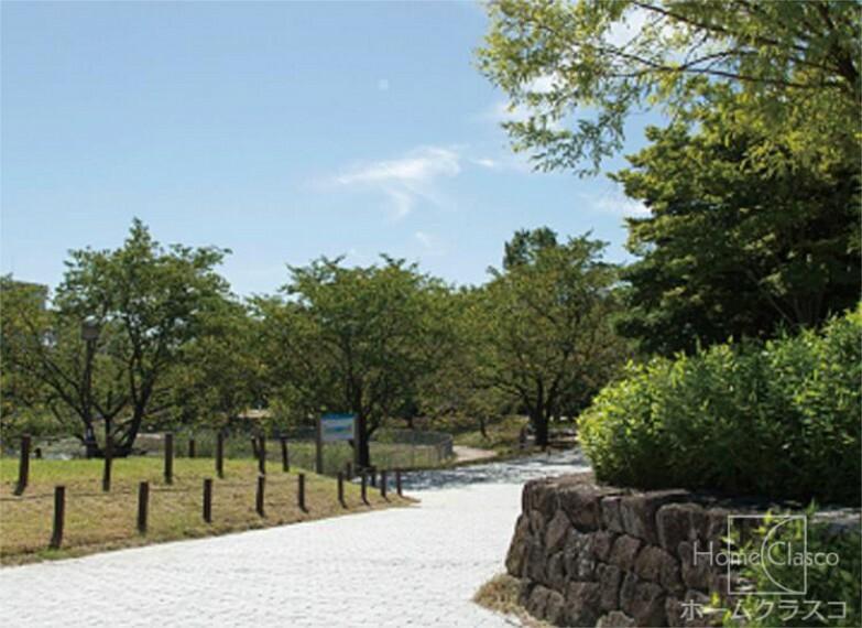 公園 細口池公園