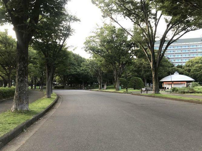 公園 駒沢オリンピック公園