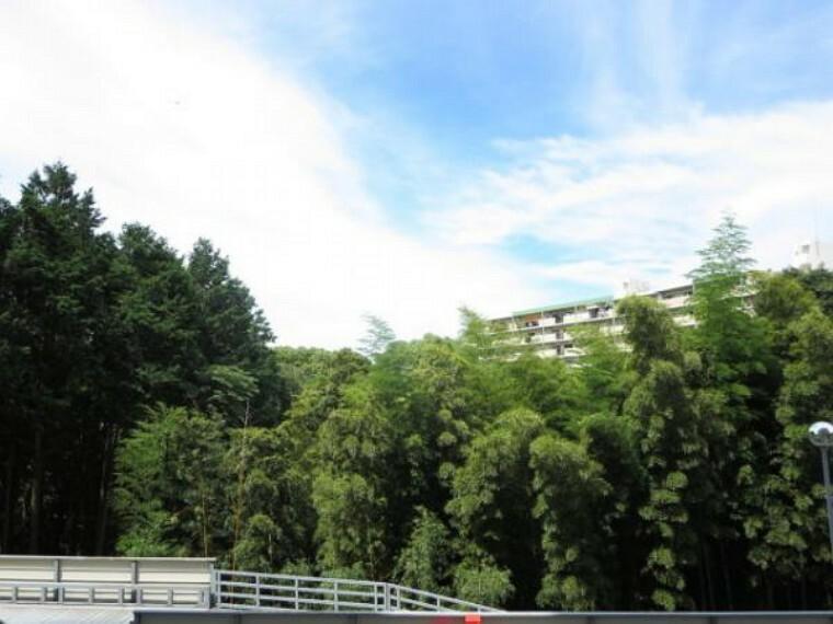 眺望 【眺望】西側バルコニー(13.32平米)からの眺望です。2階ですのであまり眺めは良くありませんが、緑も多くて窮屈な感じはありませんよ。