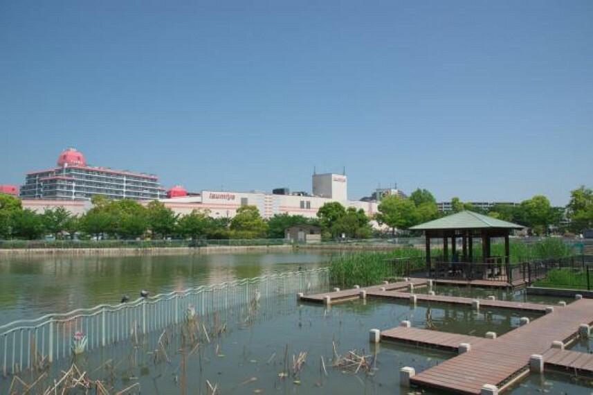 公園 市場池公園