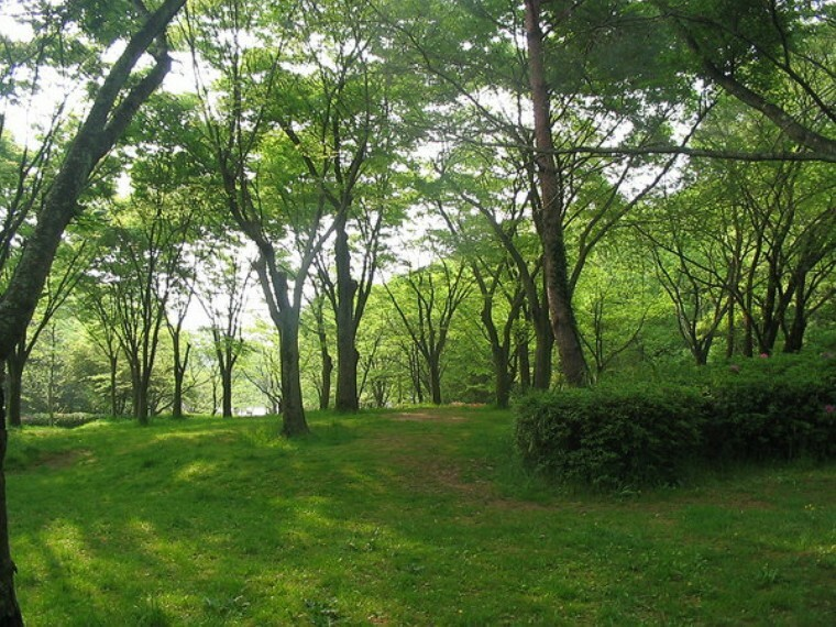 公園 宝が池公園