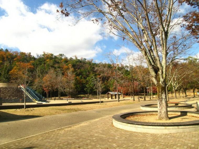 宝が池公園子どもの楽園 遊具や広場・水場などがあり、小さなお子さんも安心して遊べます。入場無料