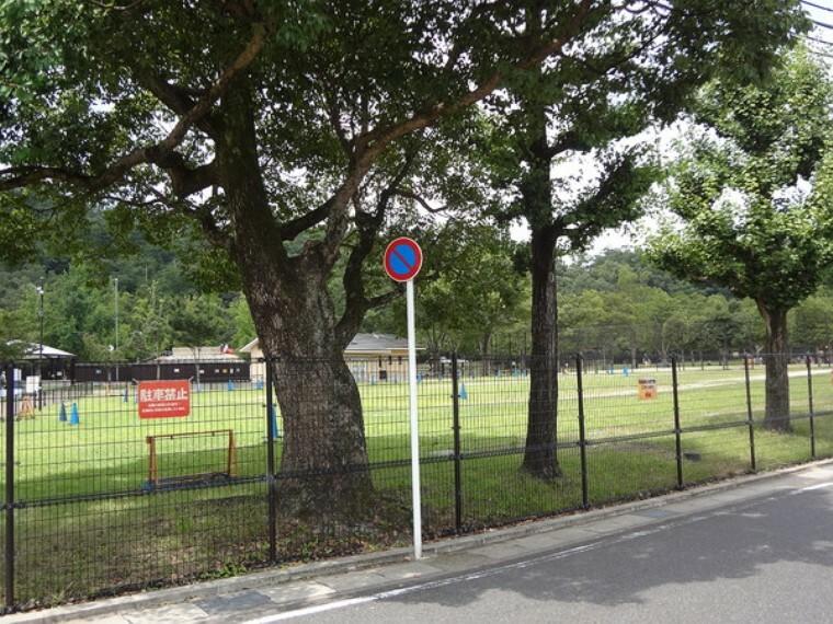 子供の楽園の芝生や緑地が近いです