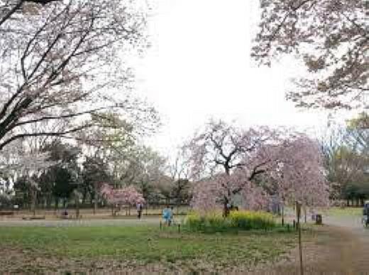 公園 ゆりの木広場まで385mです。