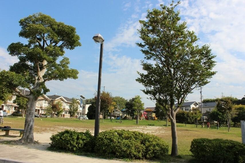 公園 かじまのおおきい公園