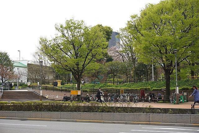 公園 ●礫川公園