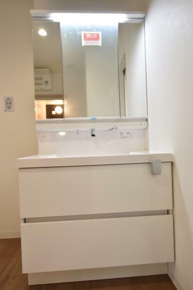 左右どちらからでも開閉できて、手元にも引き出せる便利な両開きの鏡扉。鏡裏はすべて収納スペースで、小物からストック品までたっぷり入ります。(2号地)