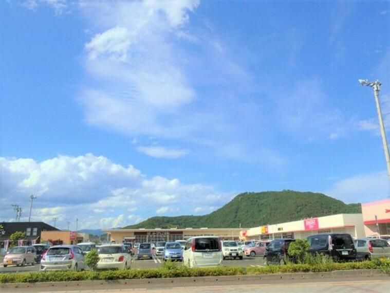 ショッピングセンター ヨークベニマル野田店 徒歩13分(約1000m)