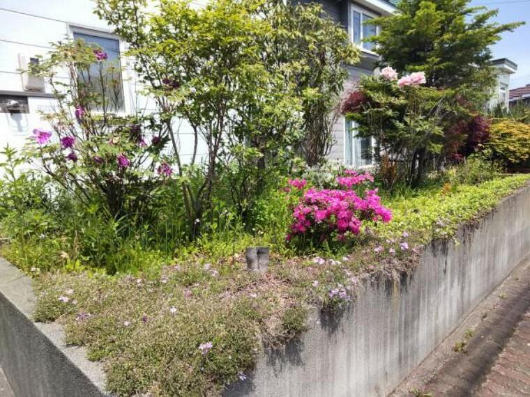 庭 [リフォーム前_庭]家庭菜園にもおススメの庭が南側にございます。リフォームで庭の整地をしております。ただしご自身で家庭菜園をされる場合は土の入れ替え等が必要になる場合がございます。