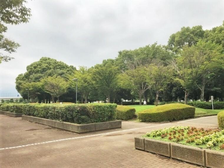 公園 海老名運動公園