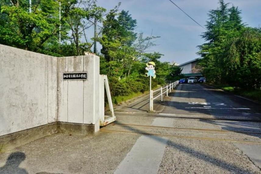 仙台市立桜丘小学校320m