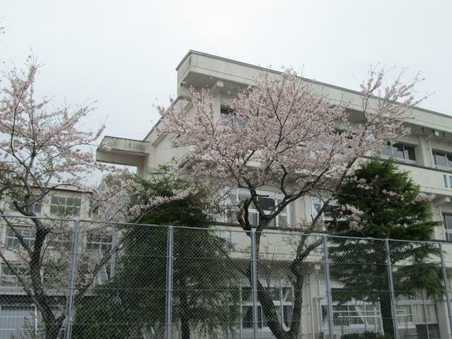 中学校 原里中学校 静岡県御殿場市川島田1363-1