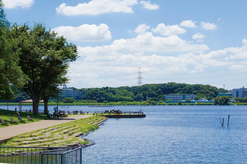 公園 手賀沼公園  手賀沼のほとりにある、我孫子市鳥の博物館に隣接する公園です。敷地内の「広場」には、ミニ手賀沼や水の広場、じゃぶじゃぶ池などがあり、水遊びやポンプを使った遊具などで遊ぶことができます。(現地より徒歩5分)