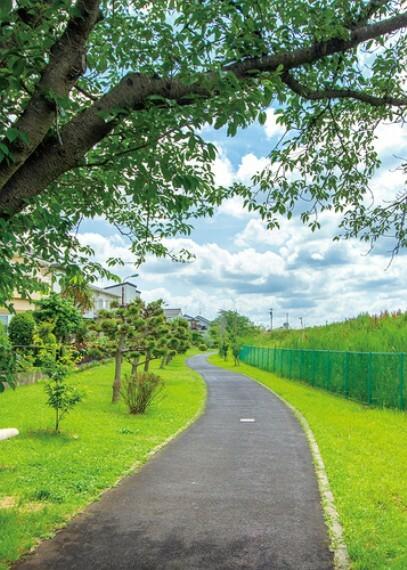 公園 手賀沼遊歩道  手賀沼を眺めながらの散策、サイクリング、野鳥観察など、市民の憩いの場として親しまれている遊歩道です。散策以外にも「水生植物園」「鳥の博物館」「手賀沼親水広場」などの見どころもたくさんあります。(現地より徒歩8分)
